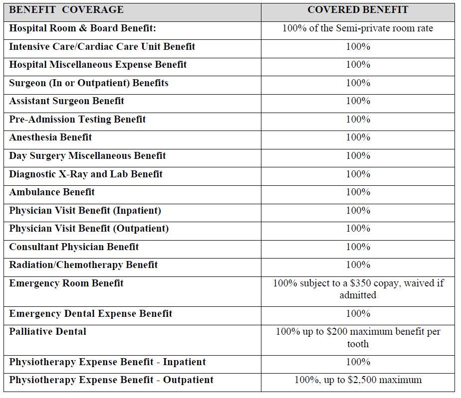 Internship Insurance